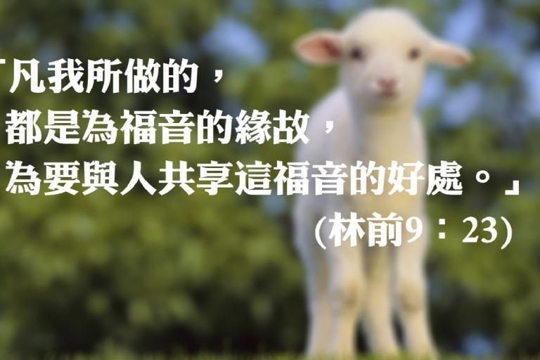 領人歸主,從心出發;一聲問候、一點關心,把上主的祝福傳遞至你身邊所愛的人😊